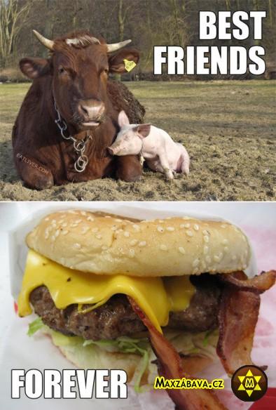Nejlepší přátelé. Navždy.